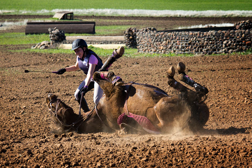 Camelot Horse Trials -- but mostly tribulations!