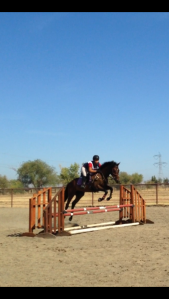 I mean, he jumps 3' even when the poles are set lower so....