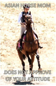 ASIAN HORSE MOM 6