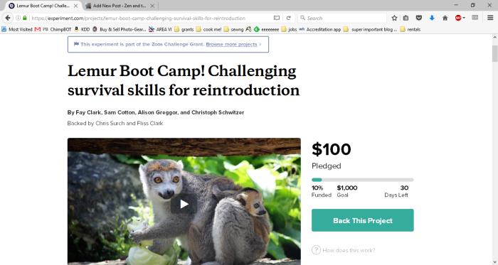 lemurbootcamp