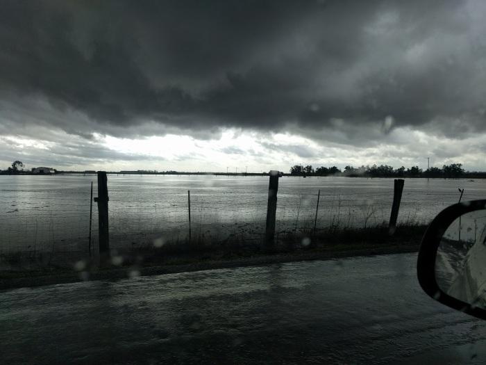 downpour03